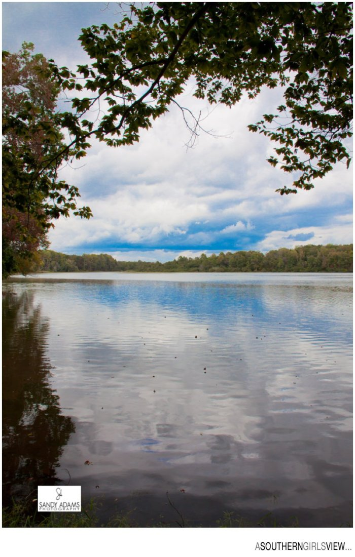 Sandy Adams Photography Carroll County Lake Mckenzie Tennessee-09-3