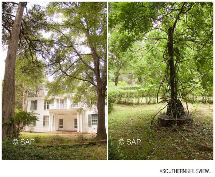 Sandy Adams Photography William Faulkner Rowan Oak-7414