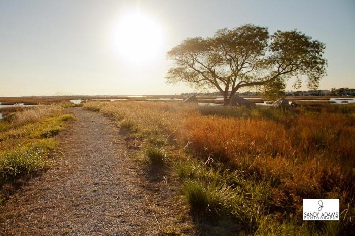Sandy Adams Photography Galveston Island travel photographer-4449